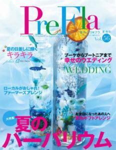 prefla-ringpillow2