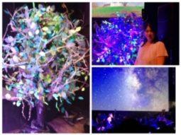 「60光年先の銀河」七夕にぴったりな、幻想的なフラワーオブジェ×コンサート☆