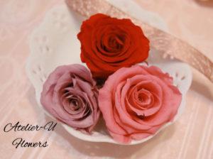 rose-color