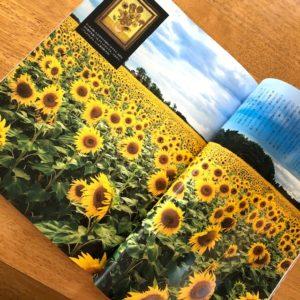 flower-magazine2