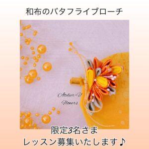 butterfly-tsumami5